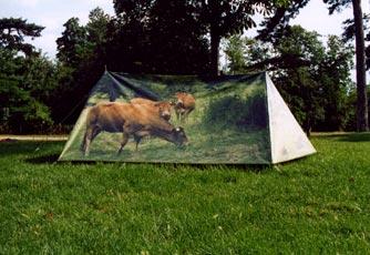 Tente1[1]